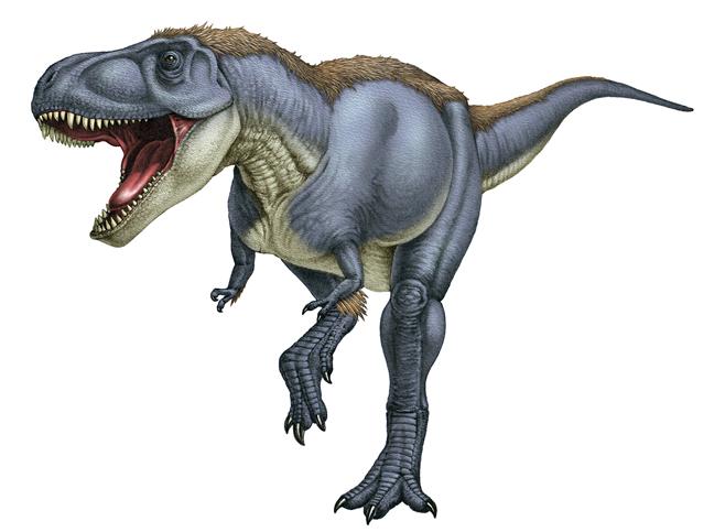 「恐竜 羽毛」の画像検索結果